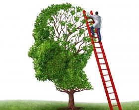 neuropsicologia neuropsicologa terapia cognitiva neuronas cerebro psicologos psiquiatras directorio medico de cancun